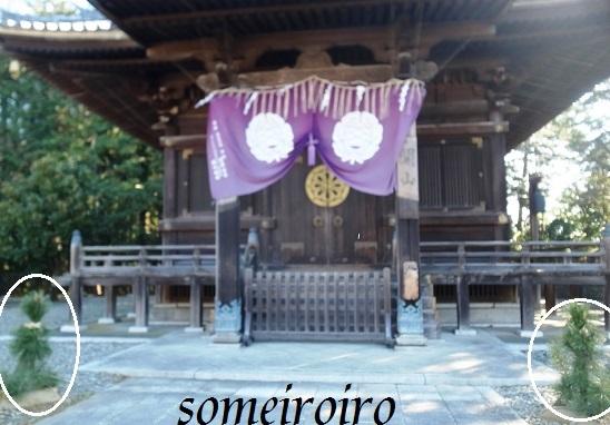 成田山の正月飾り?_e0086881_22271438.jpg