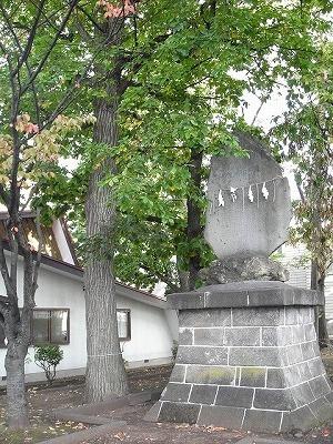 西宮の沢の三川を歩く(2)_f0078286_10390946.jpg