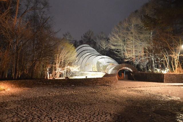 冬の軽井沢④:石の教会_c0124100_10503426.jpg