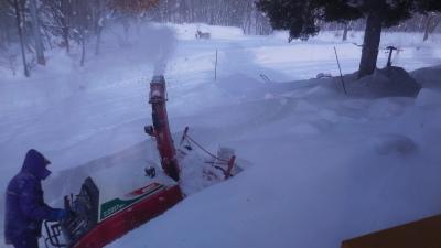 1月7日(月)   雪_f0210811_15582753.jpg