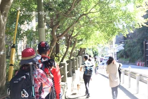 第25回マザーウルフ遠足 鎌倉源氏山レポート_e0191026_18553307.jpg