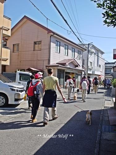第25回マザーウルフ遠足 鎌倉源氏山レポート_e0191026_23283591.jpg