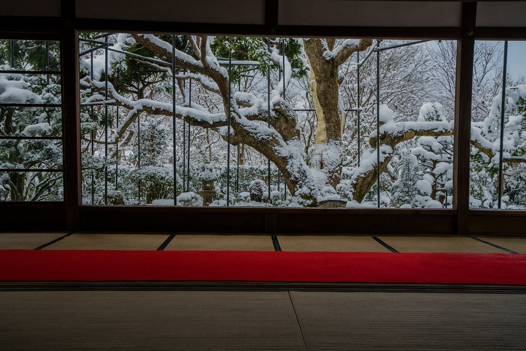 宝泉院の雪景色_e0363038_13534401.jpg