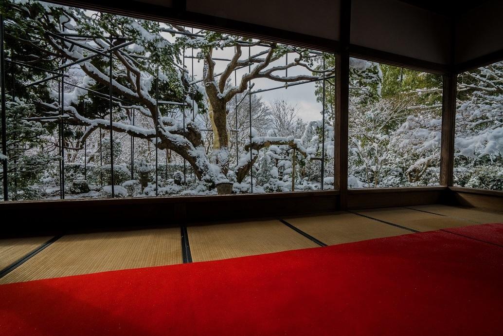宝泉院の雪景色_e0363038_13552522.jpg