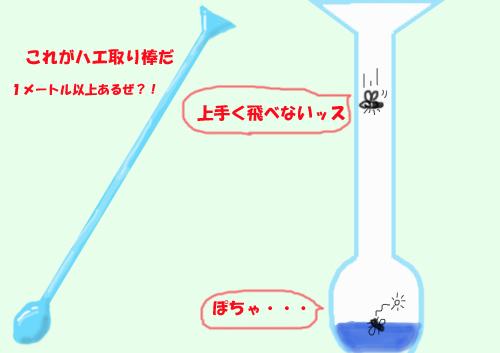 b0130243_20104718.jpg