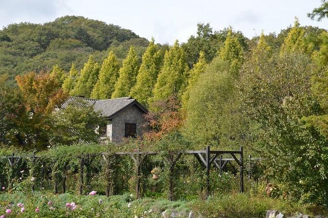 10月16日 軽井沢レイクガーデン 前編_c0124100_18315054.jpg