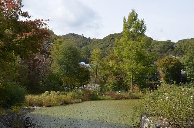 10月16日 軽井沢レイクガーデン 前編_c0124100_18315588.jpg
