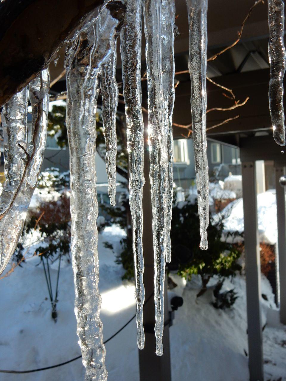 ようやく降雪のない一日がやってきてホッと一息_c0025115_21491346.jpg