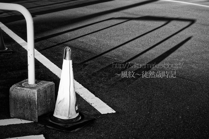 西日の冬影。_f0235723_17392011.jpg