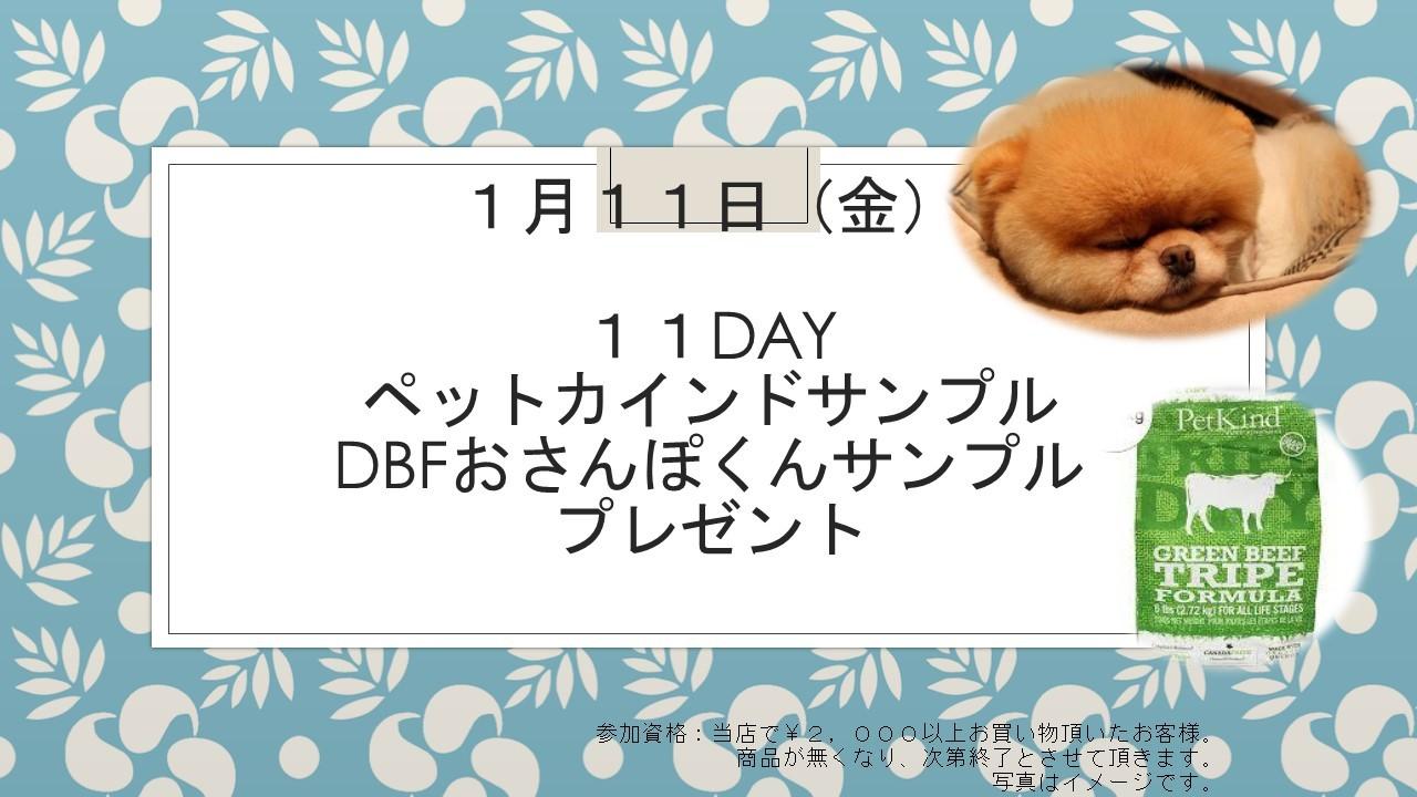 190108 11DAYイベント告知_e0181866_19392684.jpg