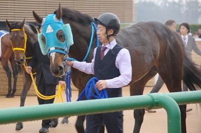 2018年度JRA賞発表、牝馬史上初の満票で年度代表馬はアーモンドアイ_b0015386_22005209.jpg