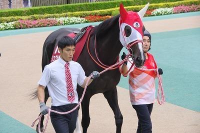 2018年度JRA賞発表、牝馬史上初の満票で年度代表馬はアーモンドアイ_b0015386_22020457.jpg