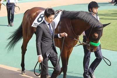 2018年度JRA賞発表、牝馬史上初の満票で年度代表馬はアーモンドアイ_b0015386_22324174.jpg
