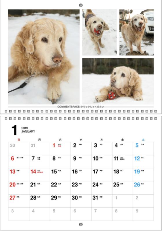 2019カレンダー♪_b0275998_12405464.png