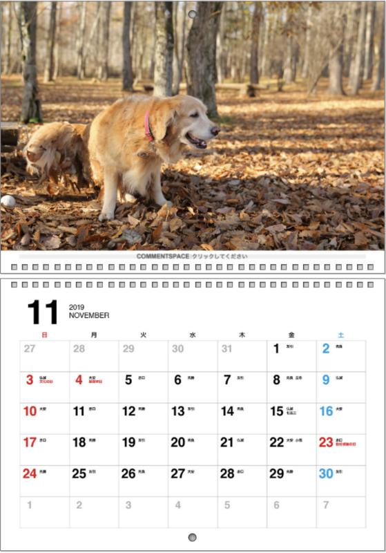 2019カレンダー♪_b0275998_12423293.png