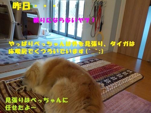 f0121712_07092910.jpg