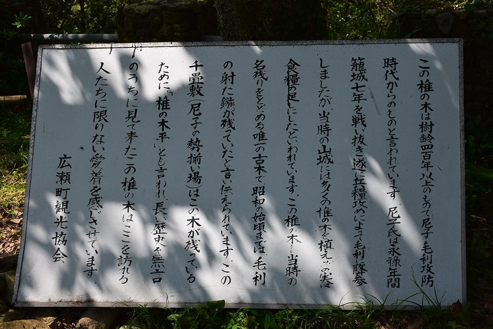 月山富田城跡登城記 その1 「登山口~太鼓壇」_e0158128_20034052.jpg