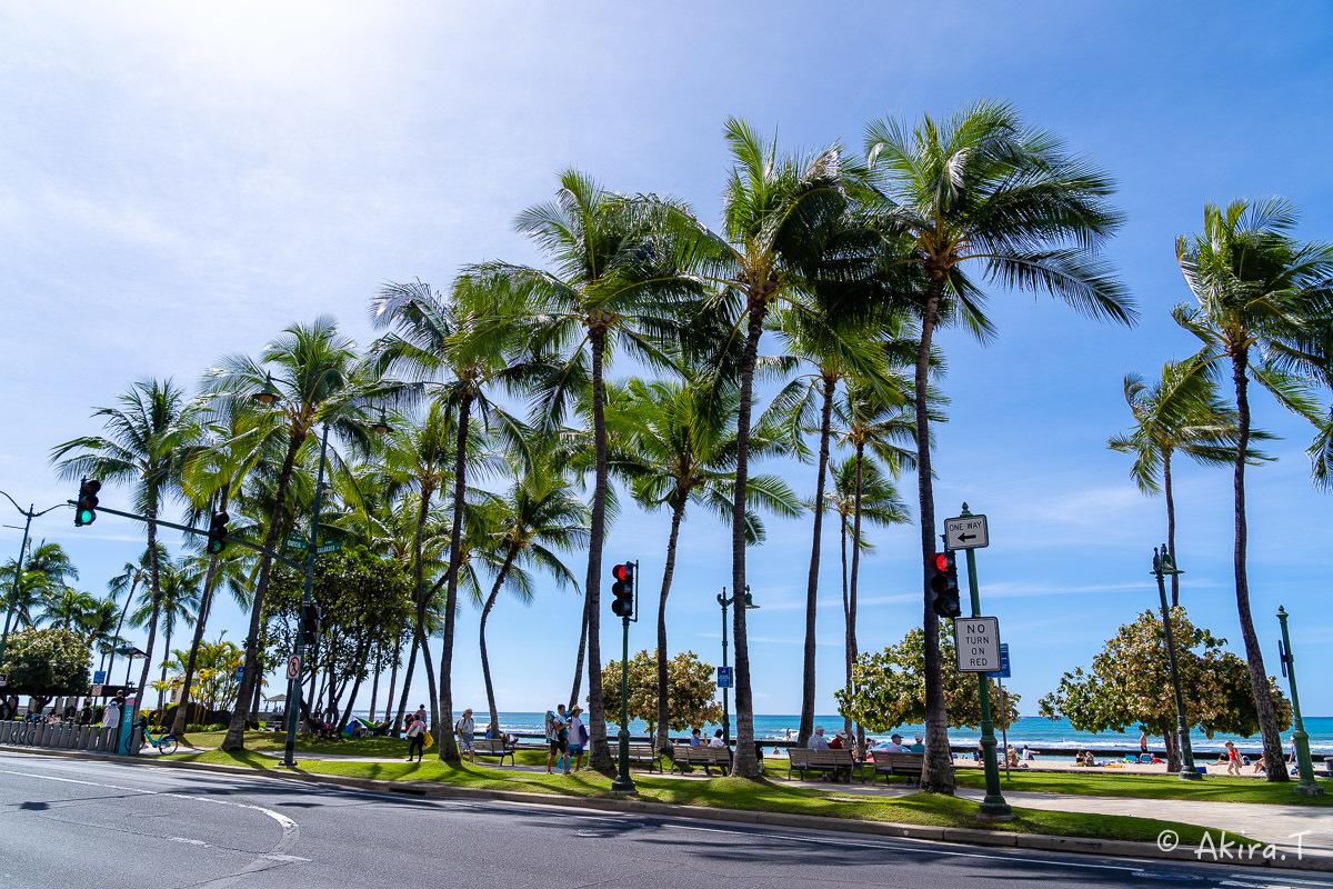 ハワイ -9-_f0152550_22521416.jpg