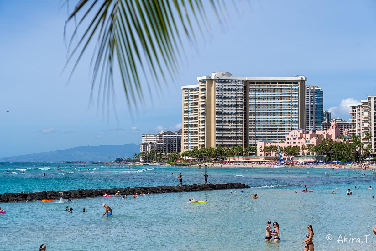ハワイ -9-_f0152550_22540035.jpg