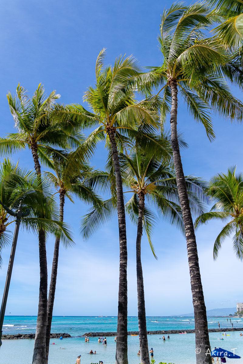ハワイ -9-_f0152550_22542926.jpg