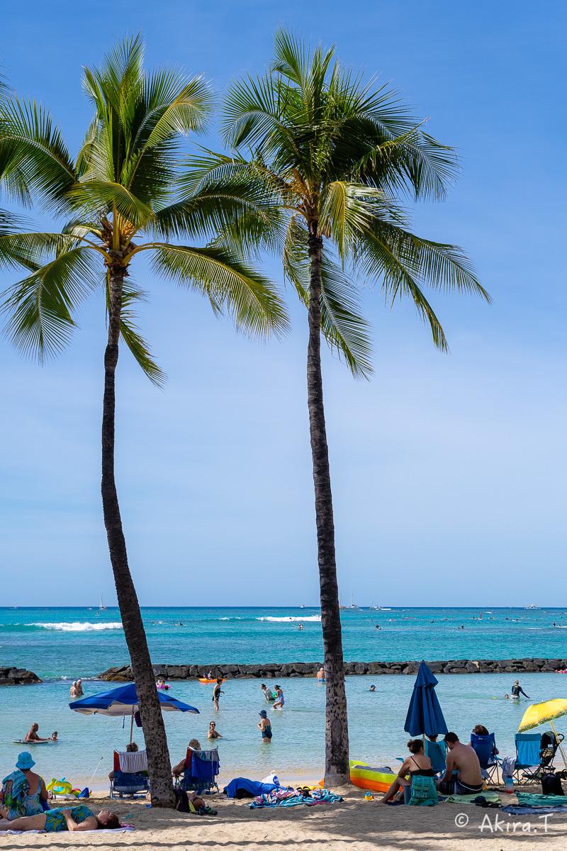 ハワイ -9-_f0152550_22544445.jpg