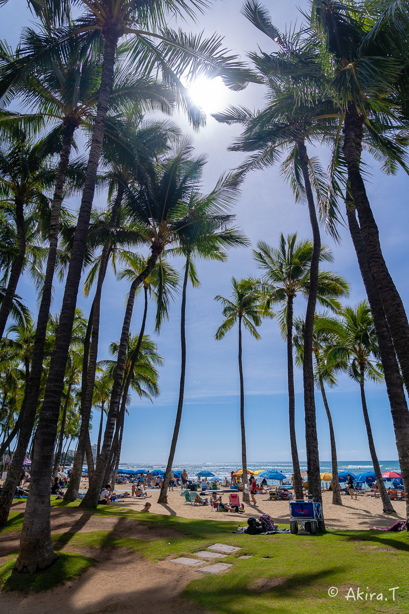 ハワイ -9-_f0152550_22553272.jpg