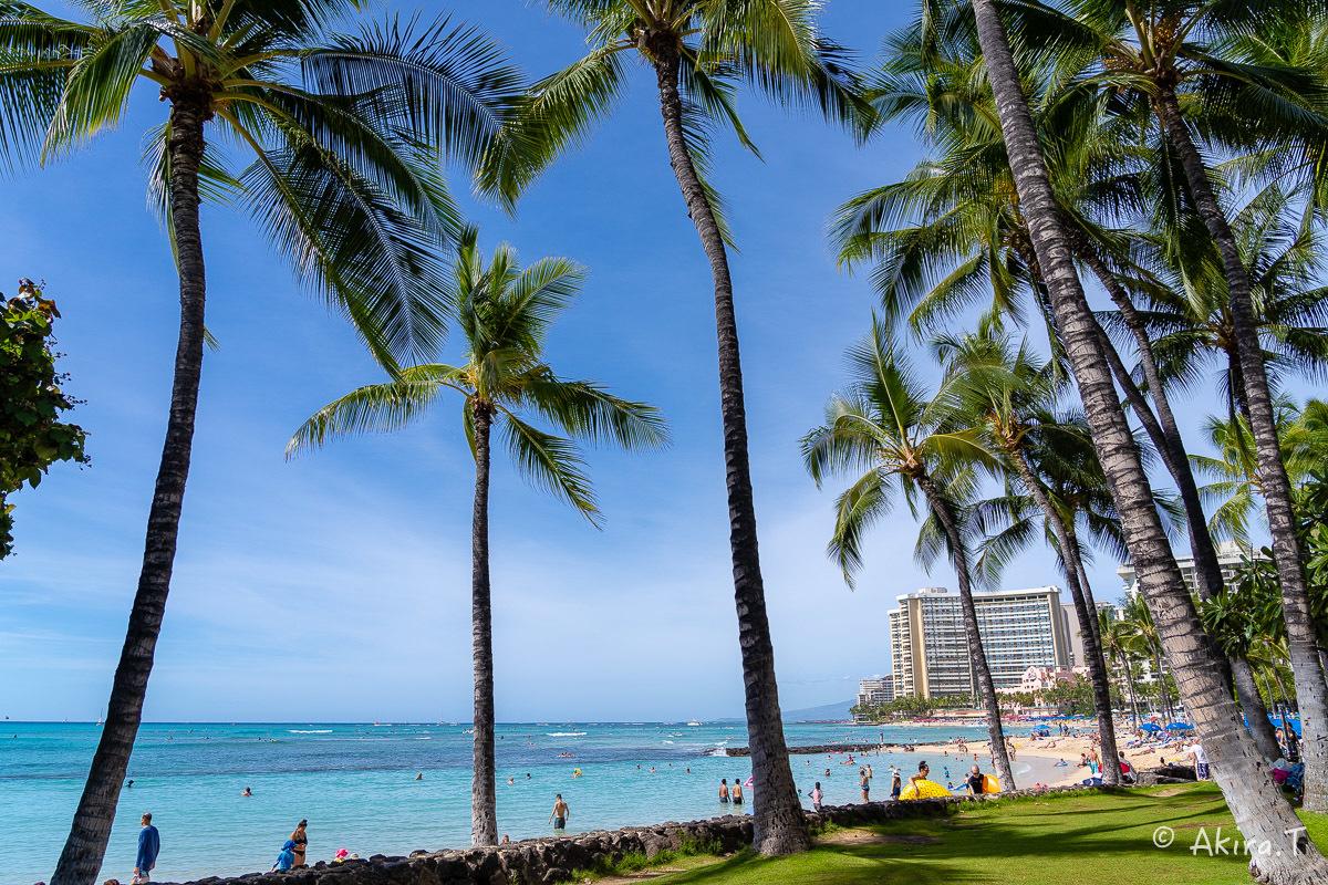 ハワイ -9-_f0152550_22560833.jpg