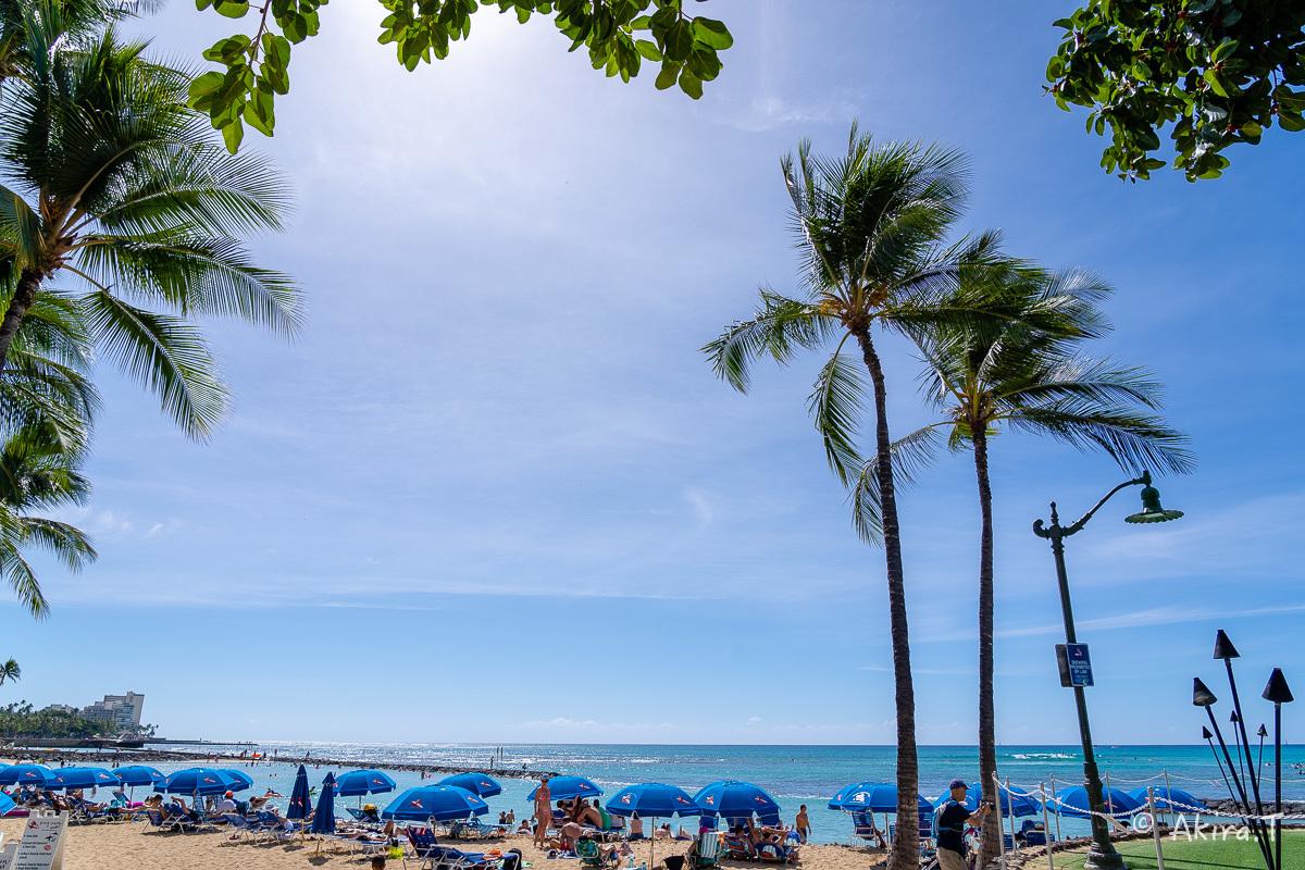 ハワイ -9-_f0152550_22564066.jpg