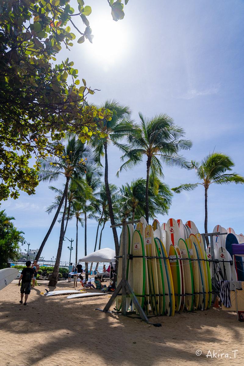 ハワイ -9-_f0152550_22573175.jpg
