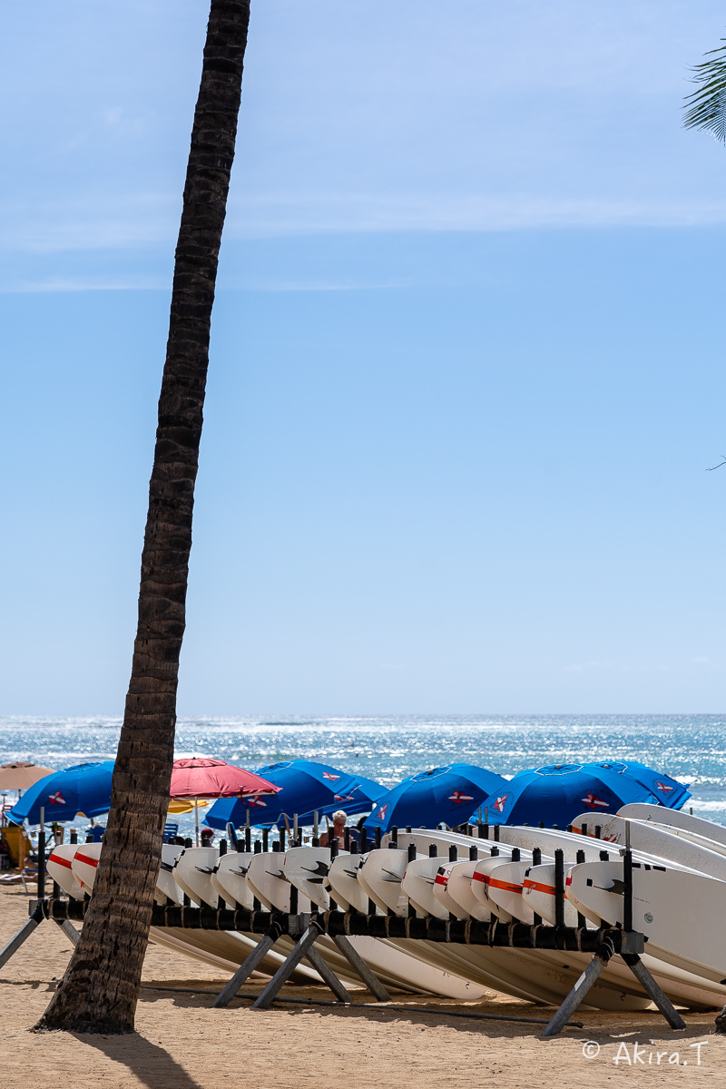ハワイ -9-_f0152550_22574408.jpg