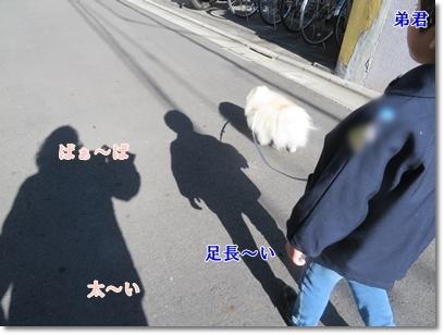 b0167519_20043296.jpg