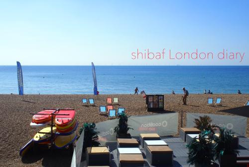 shibafロンドン日記_05 Brightonへshort trip_e0243765_19454620.jpg
