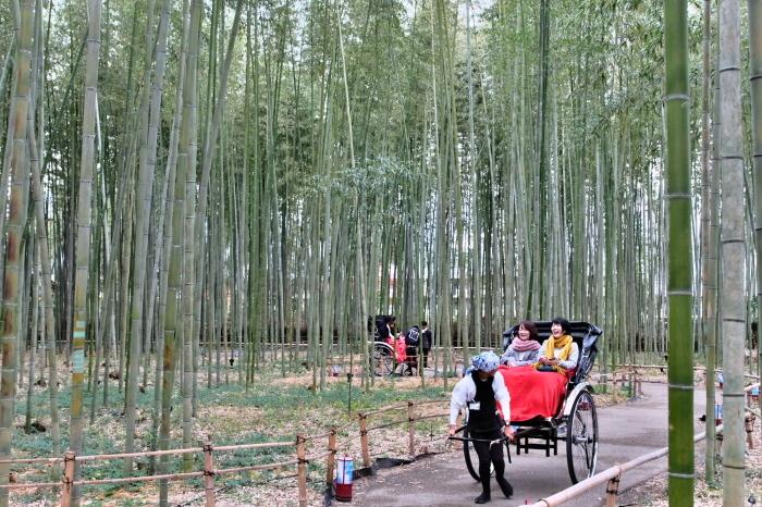 嵐山 紅葉2018_f0021869_22161536.jpg