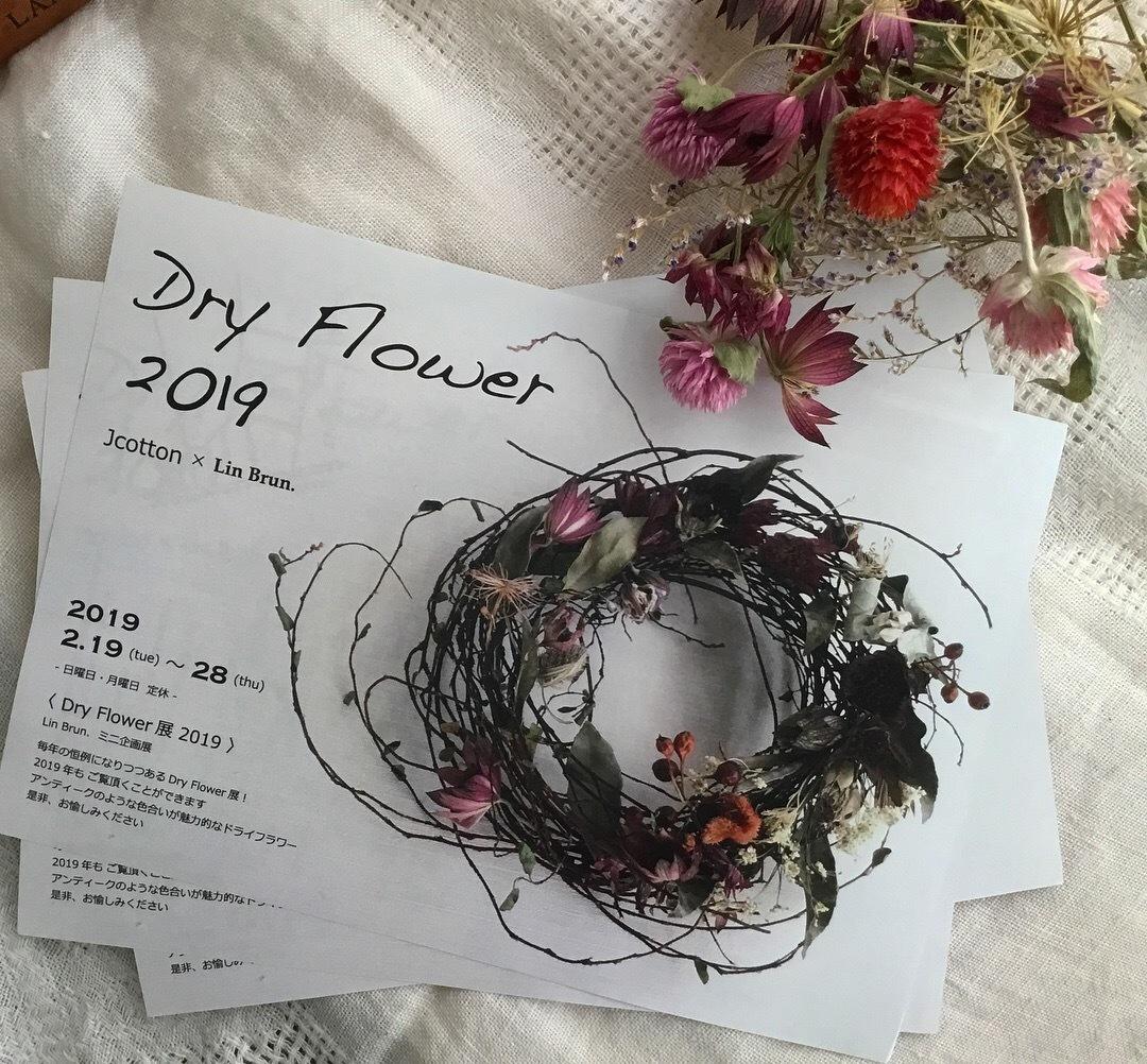 Dry Flower展 vol.3_a0243983_14144513.jpeg