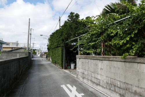 海界の村を歩く 東シナ海 渡嘉敷島_d0147406_19384472.jpg