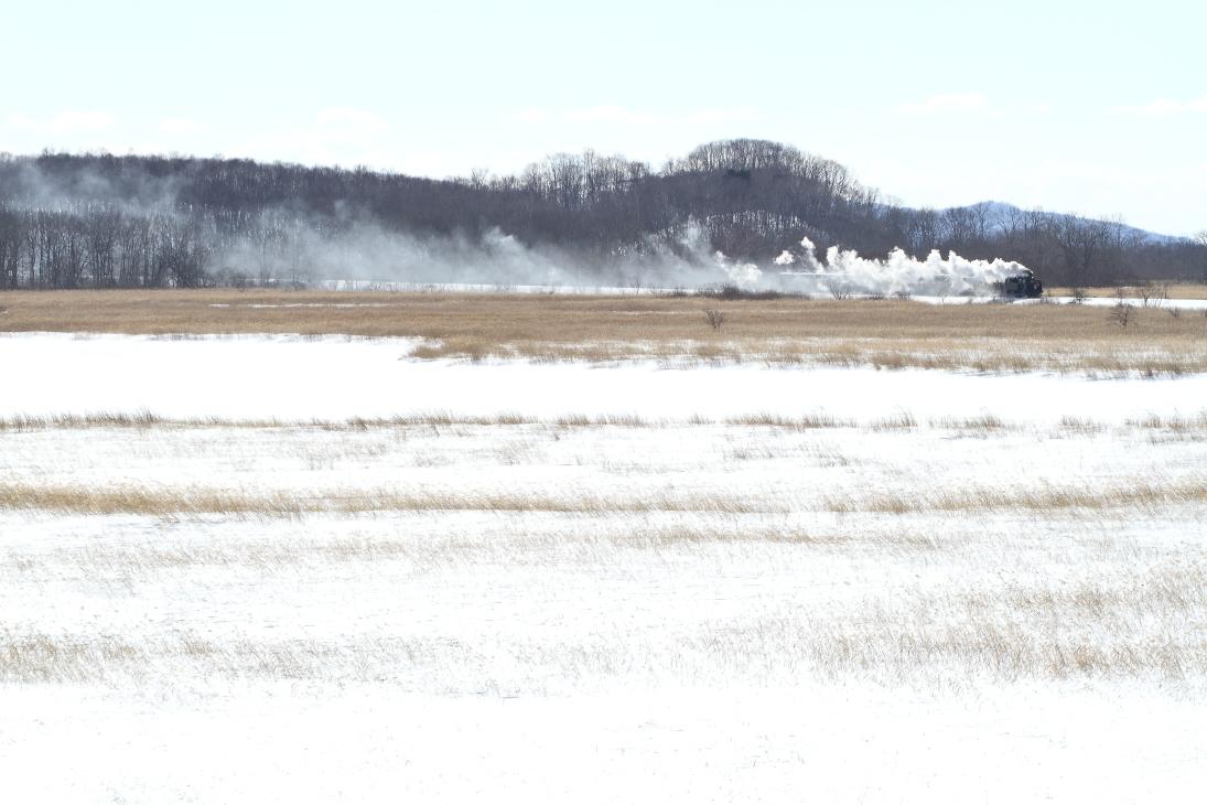 雪原に残る白煙 - 釧網線 -_b0190710_19570430.jpg