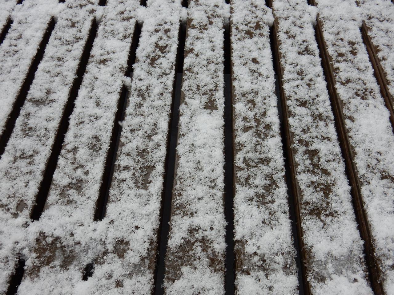 ようやく雪が止みました_c0025115_21560839.jpg
