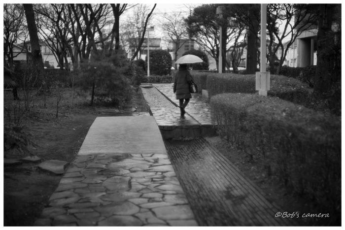 冷たい雨_b0246079_19362077.jpg