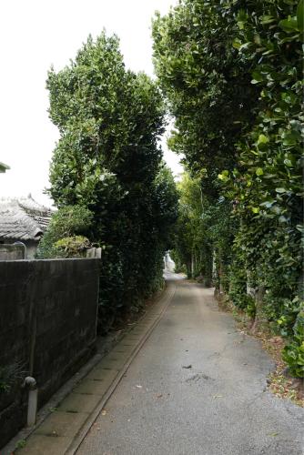 海界の村を歩く 東シナ海 瀬底島_d0147406_15501529.jpg