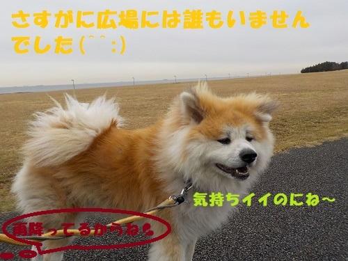 f0121712_21394456.jpg