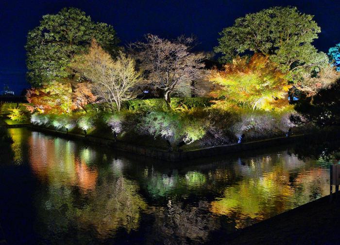 東寺ライトアップ 紅葉2018_f0021869_15211164.jpg