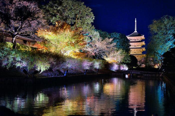 東寺ライトアップ 紅葉2018_f0021869_15211254.jpg