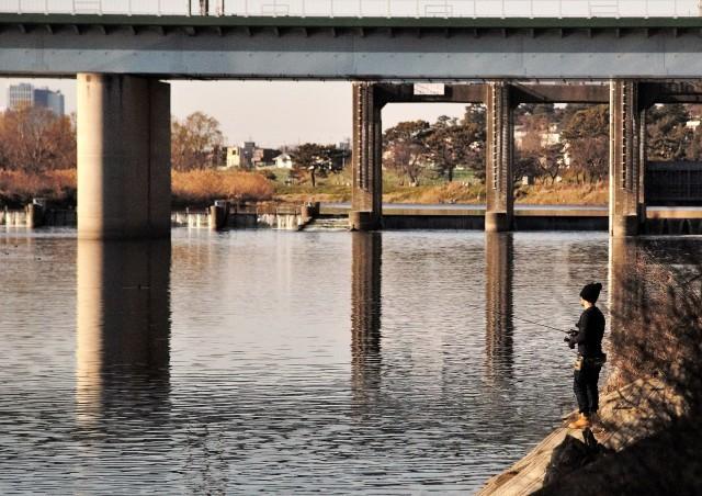 多摩川を散歩して_e0305388_19383664.jpg