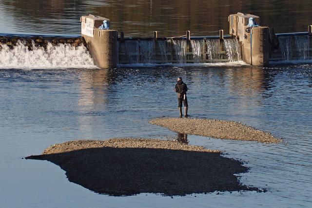 多摩川を散歩して_e0305388_19404432.jpg