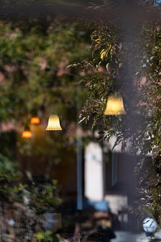 ランプと薔薇の喫茶店_d0353489_22565024.jpg