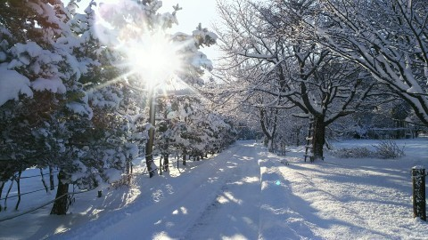 Oh! 寒い!!_b0343293_22023316.jpg