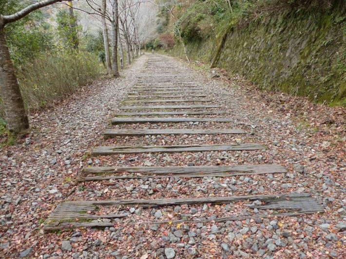 旧福知山線廃線敷ハイキング_f0296312_02260332.jpg