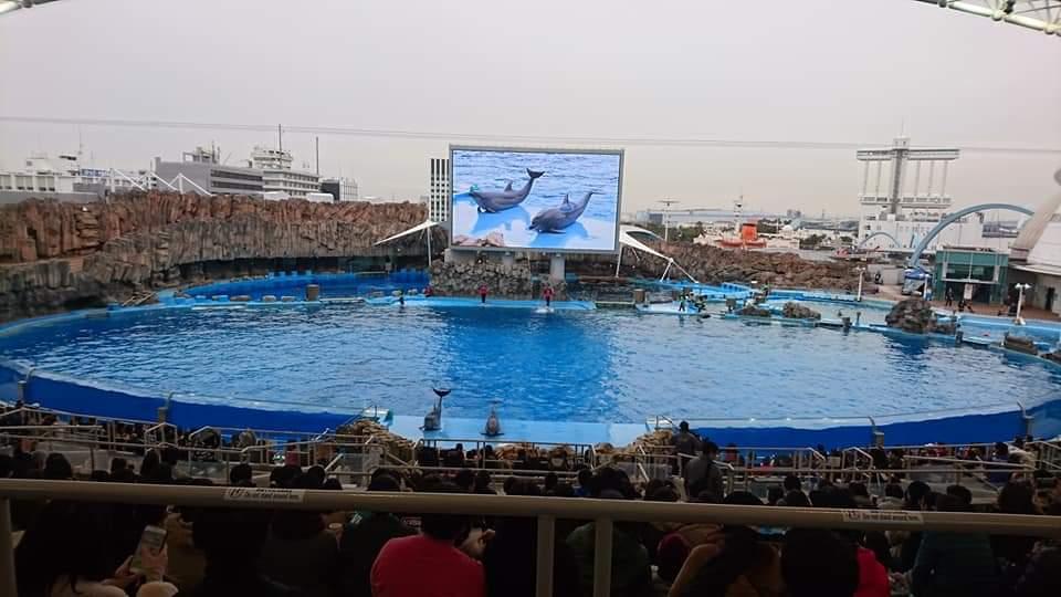 名古屋港水族館へいってきました!_f0373339_219306.jpg