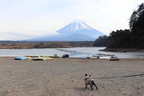 精進湖~パノラマ台ライトトレッキング_e0234741_16532101.jpg