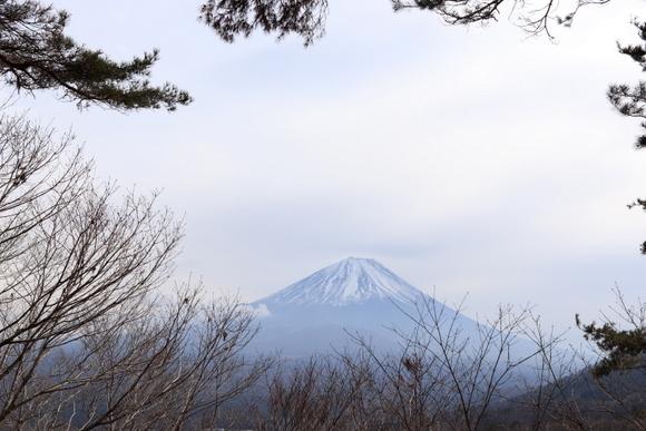 精進湖~パノラマ台ライトトレッキング_e0234741_16532144.jpg
